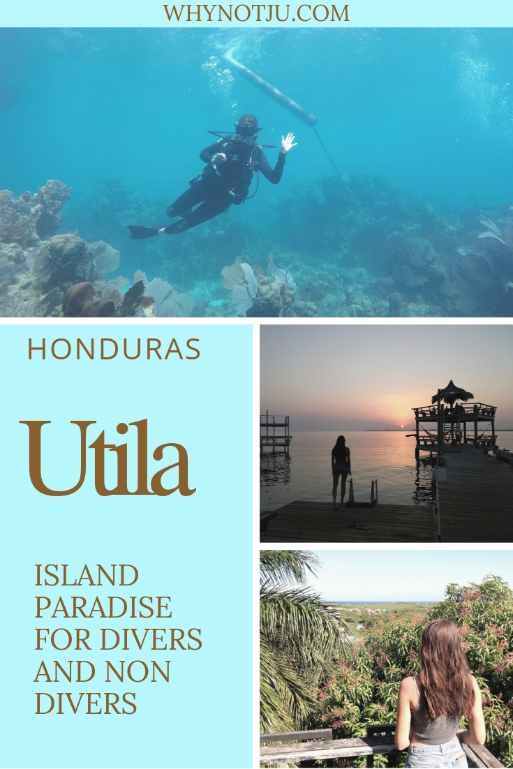 Utila is a Caribbean island in Honduras. All info you need for your Utila diving experience and what else to do on Utila if you're not diving or not