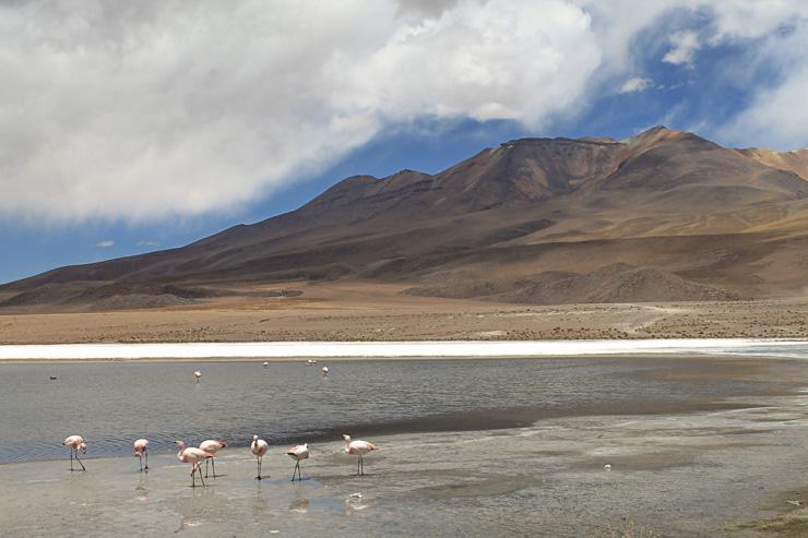 How to prevent altitude sickness naturally Bolivia