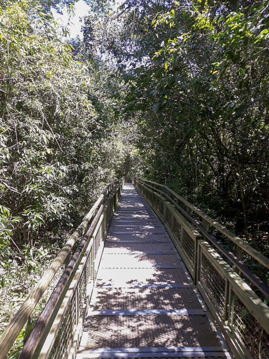 Pathway in Iguazu Falls Argentina side