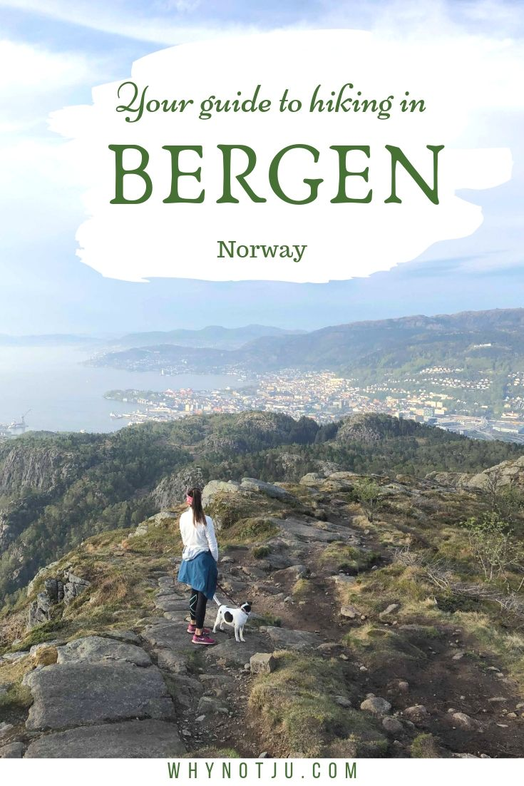 You can't visit Bergen, without visiting one of the city's many mountains. Bergen's amazing hiking trails are many, and for any level. This guide tells you all you need to know about some of the most popular hiking trails in Bergen.