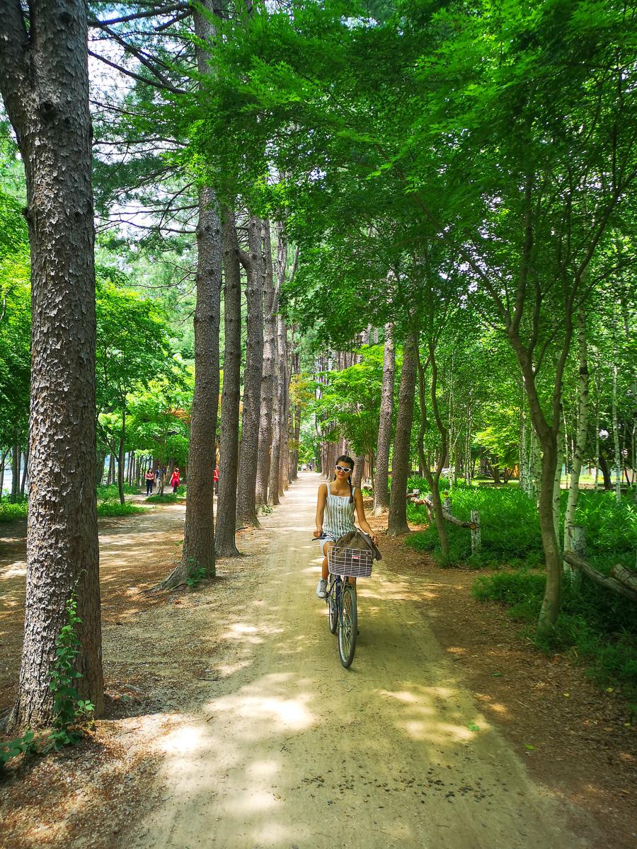 Biking on Nami Island
