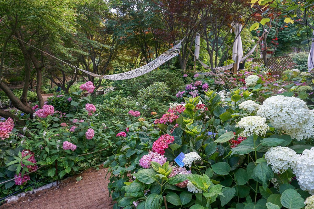 Hammock relax area Garden of Morning Calm Korea